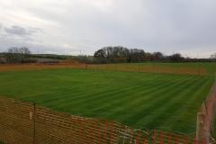 Cricket-Square-Preparation