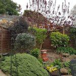Garden Maintenance Barton Seagrave