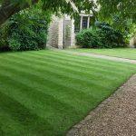 Garden Lawn Renovation Kettering