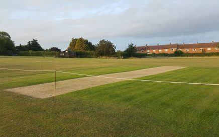 Cricket Pitch Preparation