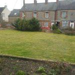 Garden Lawn Scarification