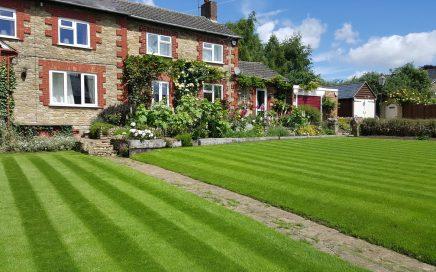 Garden Lawn Seeding