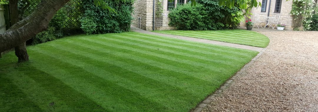 garden lawn renovation kettering - briggs and knowles ltd